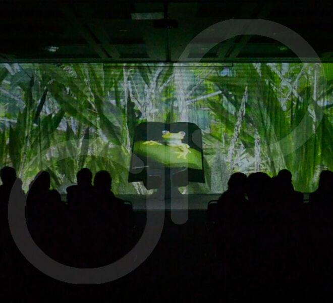 Escenografía Video Mapping Sinchi 2013-6