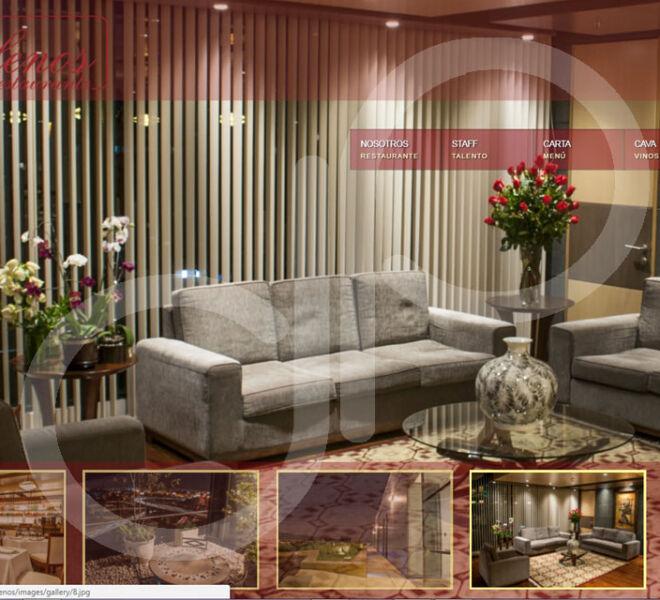 Pagina WEB LOS GALENOS-5