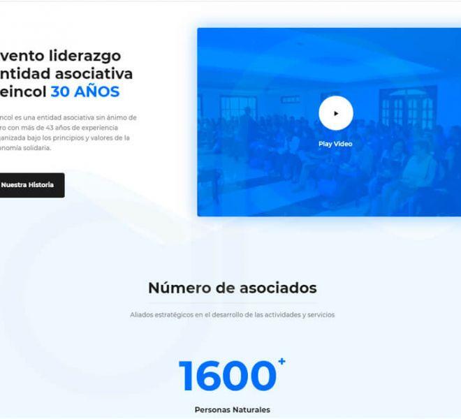pagina-web-feincol-1