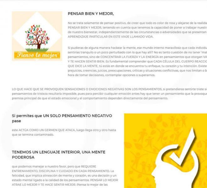 pagina-web-feincol-3