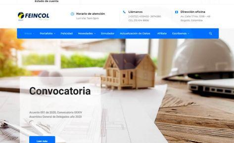Diseño e instalación de página web Feincol